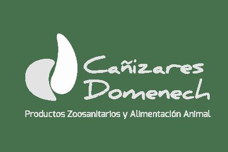 Cañizares Domenech